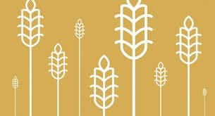 Avsnitt 55 Antinutrienter – växternas mörka sida