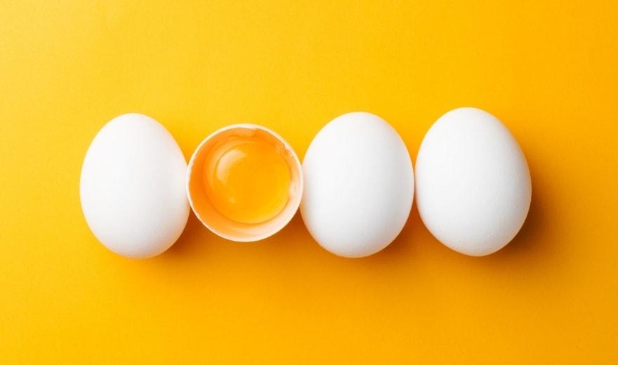 Återintroduktion – vilka livsmedel tål du och vilka tål du inte?