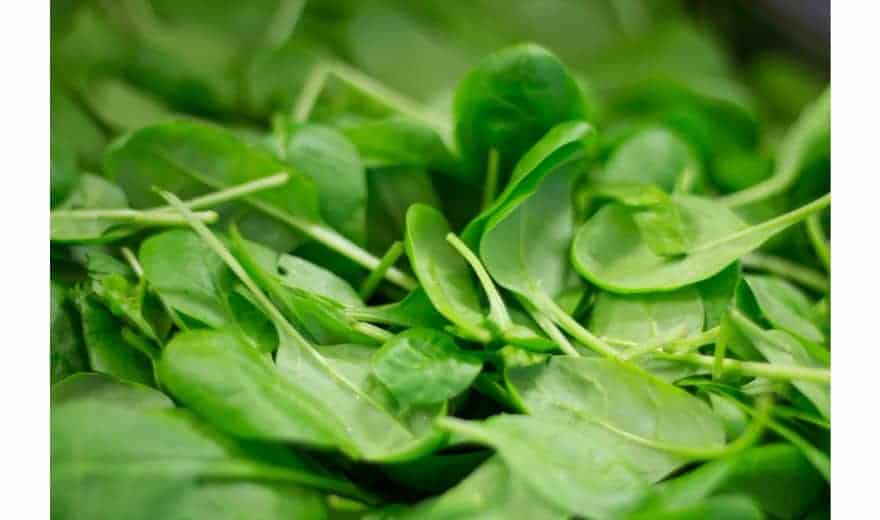 Avsnitt 38 Grönsaker – varför är de bra för hälsan?