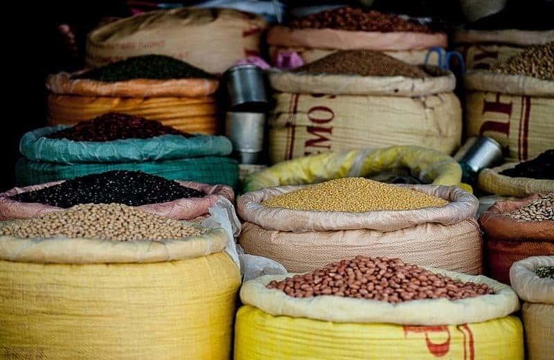 Avsnitt 54 Vegetabiliskt vs. animaliskt protein – vilka är skillnaderna?